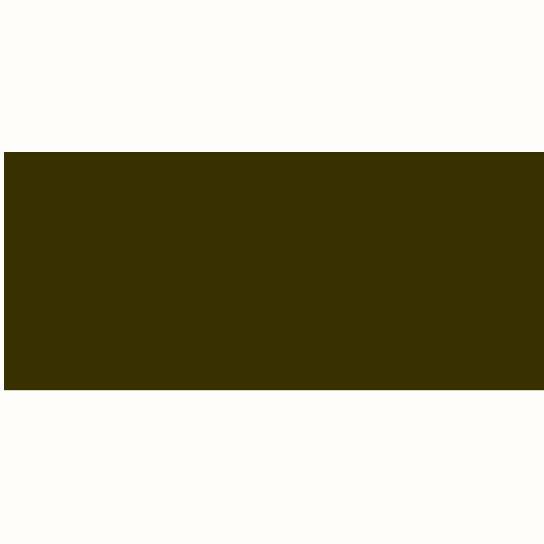 Daler-Rowney Graduate Acrylic 120ML Raw Umber