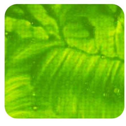 Daler-Rowney System 3 Original 150ML Pale Olive Green